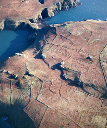 Prehistoric field systems on Skomer Island, Pembrokeshire. Crown Copyright ©RCAHMW (NPRN243692001–CS–0664A)